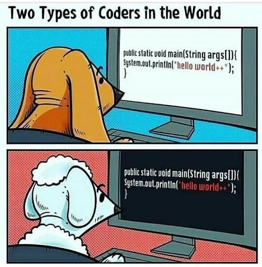 Mem Team Webdeveloper Programmers Programacion Code