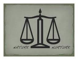 Nature-nurture debat Kaat Jooris (6HWe1)