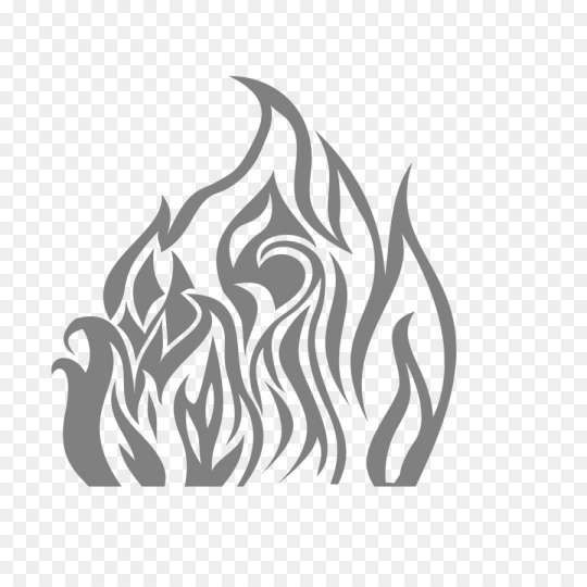 16 Flame Black And White Png Image Icon Fire Icons Black And White
