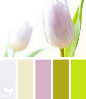 Tulip tints