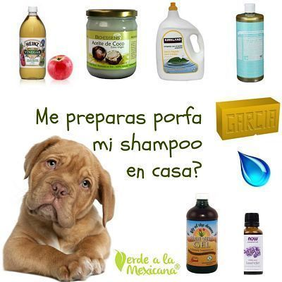 Si Eres De Las Personas Que Bañas A Tu Perruno En Casa Te Comparto Una Receta De Shampo Muy Natural Jabon Para Perros Repelente Para Perros Champú Para Perros