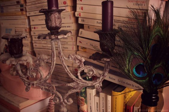 books, purple and peacock