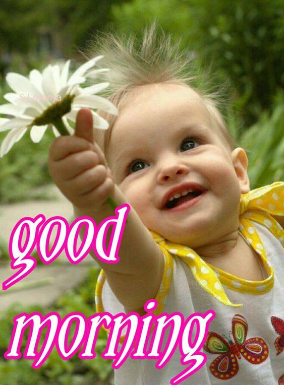 Sign In Good Morning Messages Friends Funny Good Morning Messages Good Morning Messages