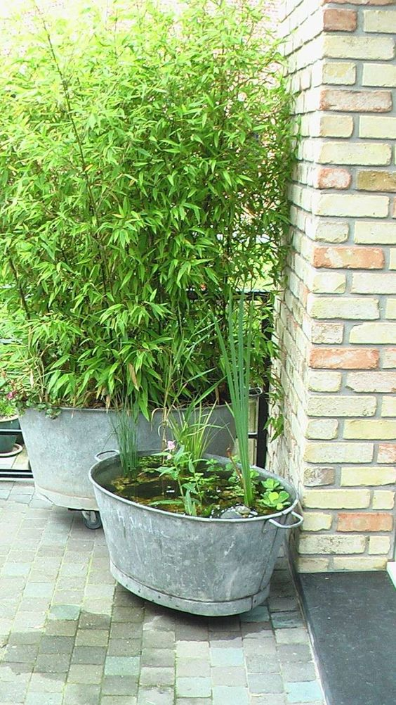 Quelques id es d 39 am nagement d co jardin base de bassine zinc galva recycl es en vente en for Fontaine de jardin zinc