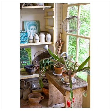 Shed interior with succulents in pots - GAP Photos -