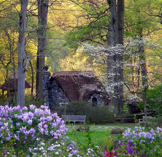 Beautiful Little Cottage In The Woods I Want To Live There