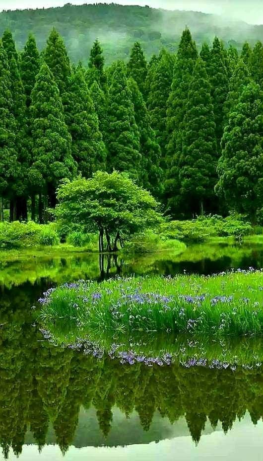 Beauty Of Mother Nature Beautiful Nature Nature Photos Nature Pictures