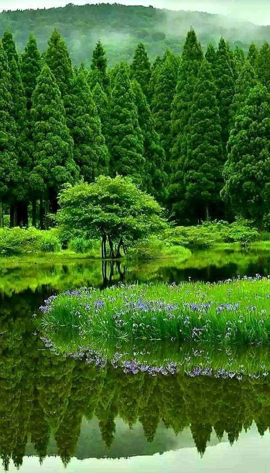 World Most Beautiful Natural Photo Wallpaper For Mobile Wasserfall Tapete Hintergrund Landschaft Natur Wallpaper