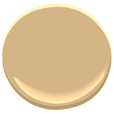 Tawny Bisque Paint Color
