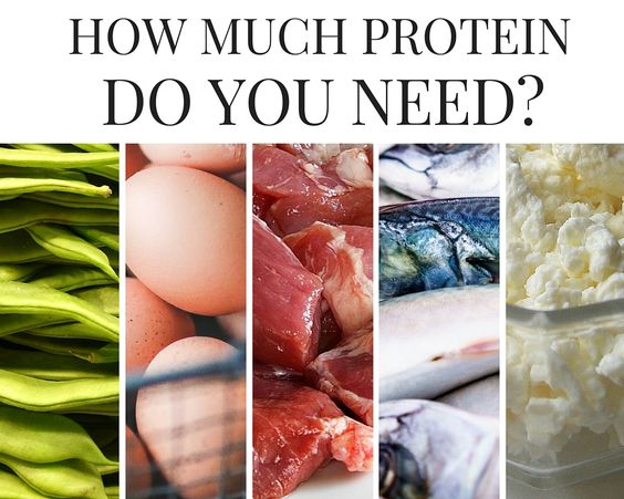 How much fat is needed per day 63