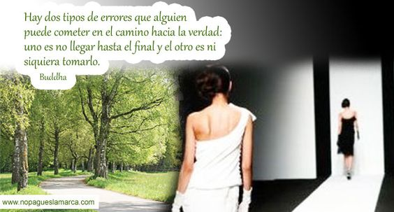 El camino... / The path...