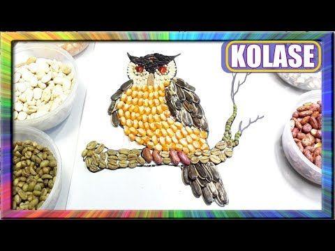 Pin Oleh Ken Karamoko Di Gambar Kolase Kolase Burung Gambar