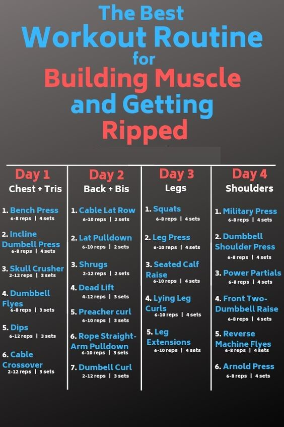 Best Workout Routine For Building Muscle Best Workout Routine Workout Splits Full Body Workout Routine