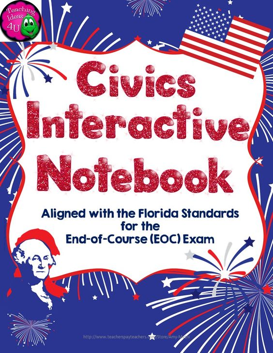 Election notebook assistance for civics?