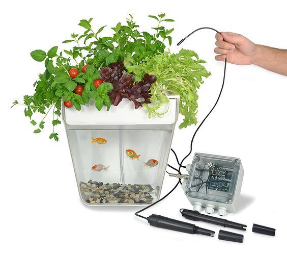 open garden hydroponics garden plants monitoring for arduino