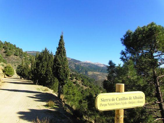 Andalusie is een schitterend stukje Spanje. Overweldigend natuurschoon, kleine witte dorpen met een Moors verleden, majestueuze steden, kronkelende weggetjes, bergen, rivieren, meren, kuststroken en uitgestrekte wijngaarden en olijfvelden wisselen elkaar in hoog tempo af. Je komt er tijd en ogen tekort. Sonrisa tours verzorgt twee zorgvuldig uitgekozen dag-excursies door Andalusie voor kleine groepen. Wij weten de weg en laten je graag meegenieten van al dit moois. www.sonrisatours.com