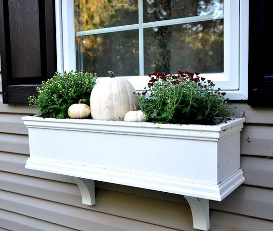 Fall Window Box: Pumpkins, I Am And Braces On Pinterest