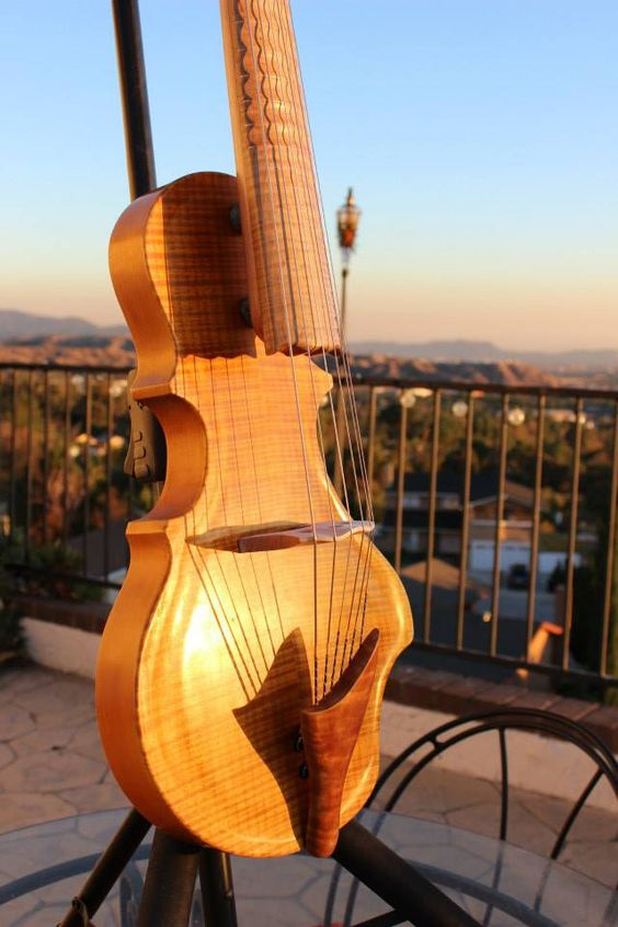 Togaman guitarviol, on its way to Brooklyn!