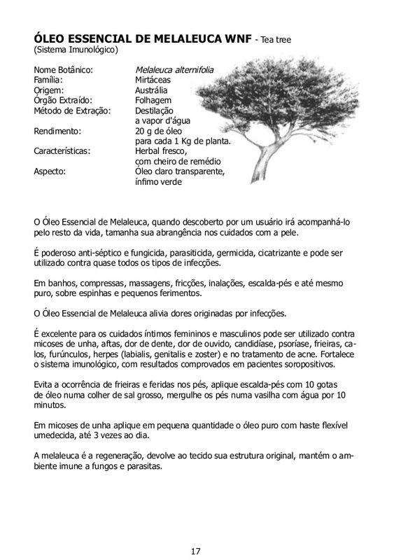 ÓLEO ESSENCIAL DE MENTA WNF(Inchaços e Mucosa Bucal)Nome Botânico:  Mentha piperitaFamília: LabiadasOrigem: China,...