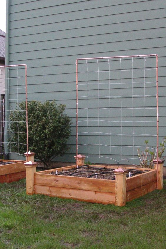 trellis vegetables and raised beds on pinterest