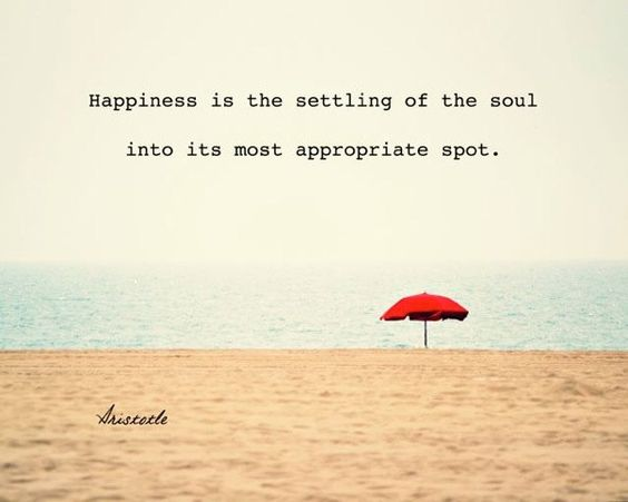 happiness is the settling of the soul into its most appropriate spot.