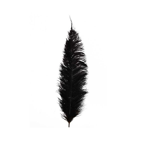 Ostrich Feather - Black (For the wings, if I decide to make my own.) £2.20 each