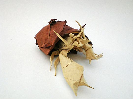 Origami Hermit Crab This Is Amazing