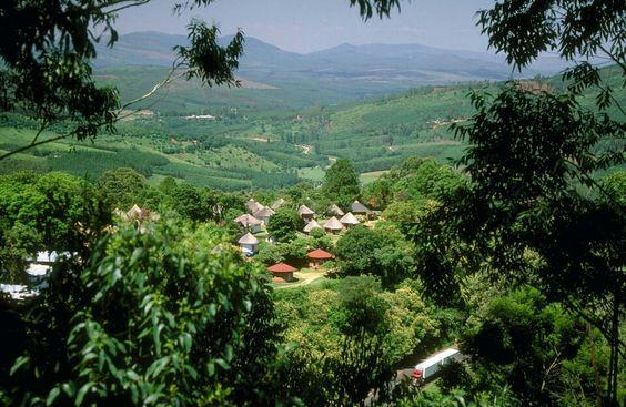 Magoebaskloof, Zuid-Afrika.