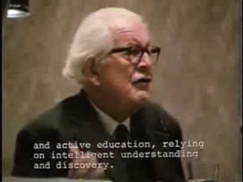 Piaget's Developmental Theory: An Overview - (Parte 1 de 2)