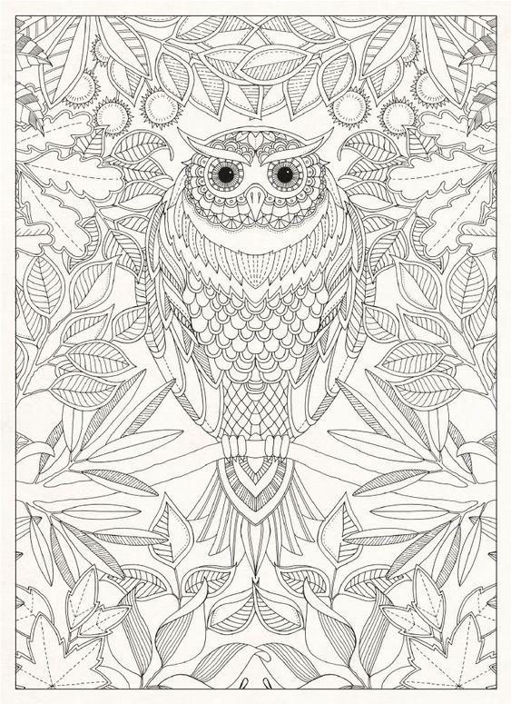 Secret Garden: 20 Tarjetas Postales: Johanna Basford: 9781856699464: Amazon.com: Libros