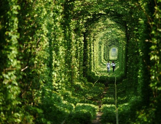 Hand-in-hand, a young couple walks down a leafy 'tunnel of love' near the town of Klevan, east Ukraine. The tunnel is actually a three-kilometre section of private railway that serves a nearby fibreboard factory...Picture: Amos Chapple / Rex Features