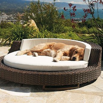 Comfortable outdoor lounge chair for humans and dogs