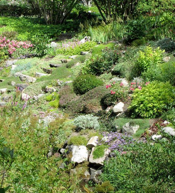 steine pflanzen garten anlegen | garden | pinterest | garten, Gartengestaltung