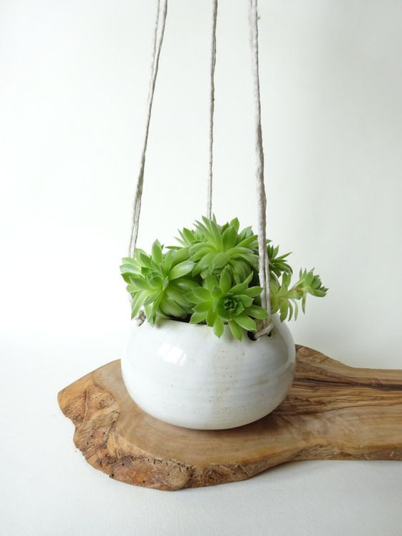 Small White hanging planter