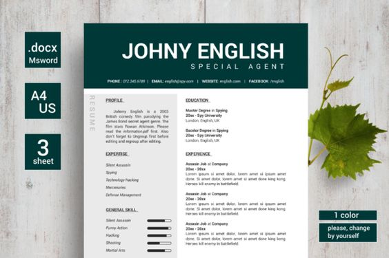 Professional Resume Template @creativework247 Resume Fonts - special agent sample resume