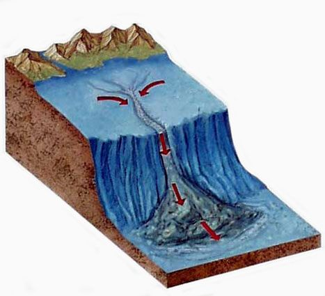 Submarine canyons submarine canyon cool geology for Define guyot