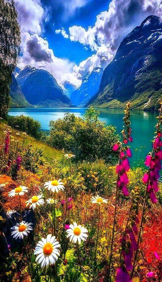 Fresh On Beautiful Nature Nature Nature Photography