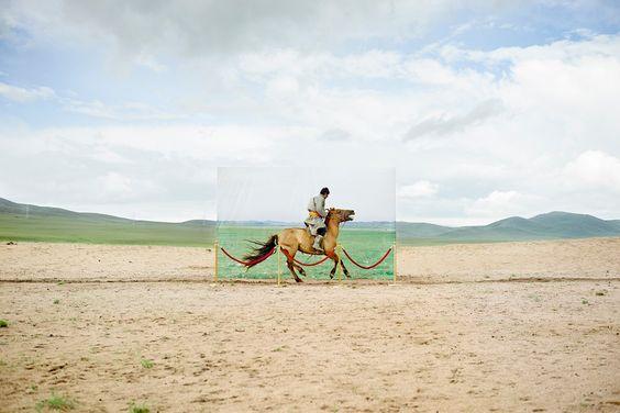 Кочевникам здесь не место: Исчезающие монгольские скотоводы в проекте ДаесунгаЛи - Bird In Flight: