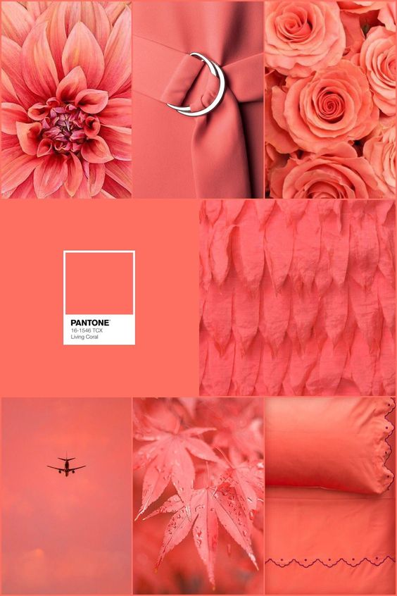Pantone was seeking authenticity in 2019, and so Living Coral was picked, an immersive color that you'll find any and everywhere in 2019. | www.essentialhome.eu/blog