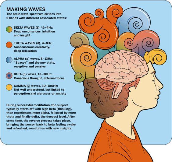 brain wave levels of consciousness ... meditation
