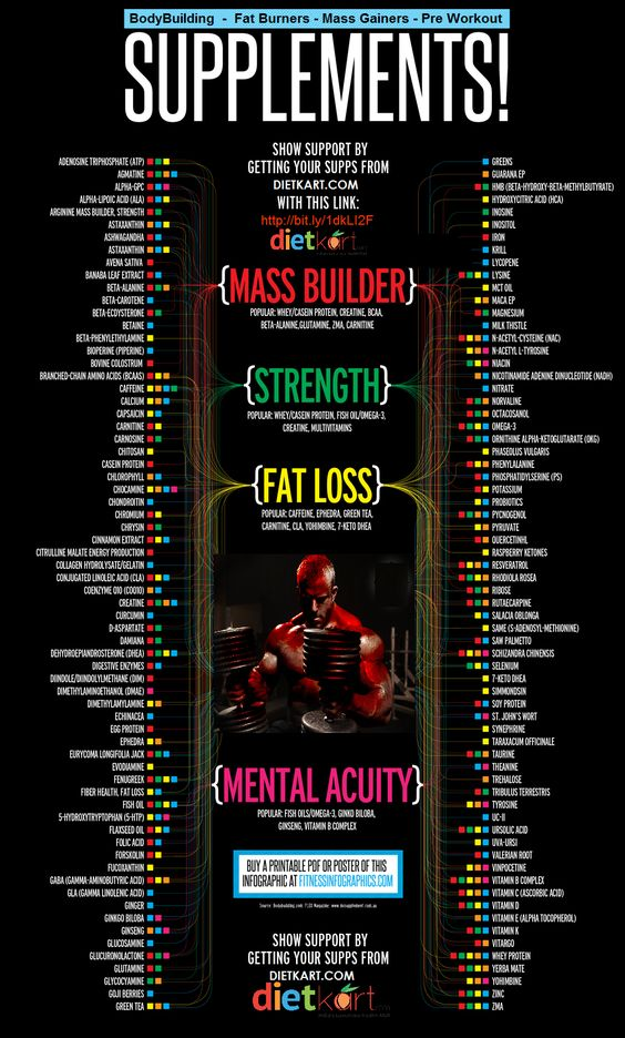 complete #visual #infographic_supplements_guide for #bodybuilding #fatburners #massgainers #preworkout #supplements