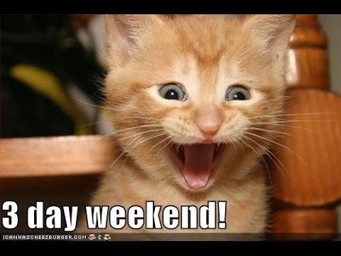 20 Best 3 Day Weekend Memes Sayingimages Com Funny Cats And Dogs Funny Animals Funny Dog Pictures