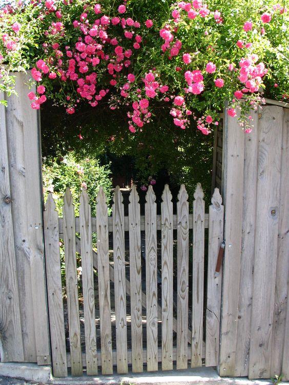 lovely garden entrance...