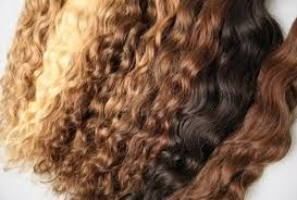 Many woman with curly hair find it hard to deal with on a daily basis. Curly extensions seem to be the   solution to their problem. No need to worry about excessive frizz  and other problems.  Be at ease with our   Brazilian Curly. This curl pattern can be used with heat tools such as flat irons as well with non-heat tools   such as flexi-rods. And yes, the curls will revert back! www.zalacliphairextensions.com.au/blog/protecting-your-hair-from-excessive-styling/