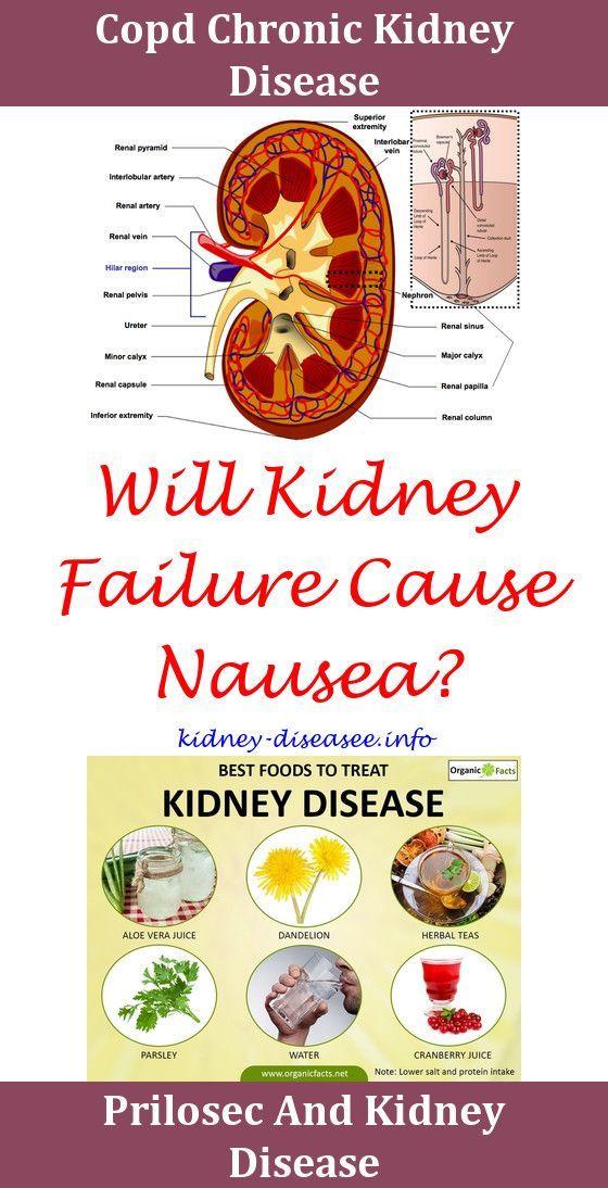 Pin En Kidney Problems