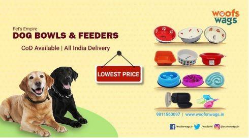 Best Online Pet Supplies Store In India Online Pet Supplies Pet Supply Stores Buy Pets