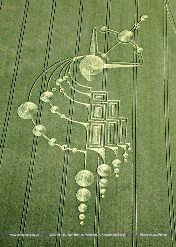 uk2009 Lucy Pringle's Crop Circle Photography
