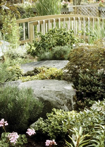 how to replace grass and mulch with groundcover landscaping