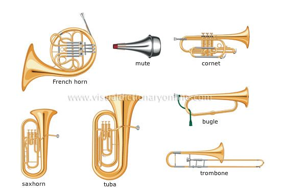 Worksheets Types Of Musical Instrument google image result for httpwww 1stworldstore commediacatalog commediacatalogproductcache1image9df78eab33525d08d6e5fb8d27136e95grgr