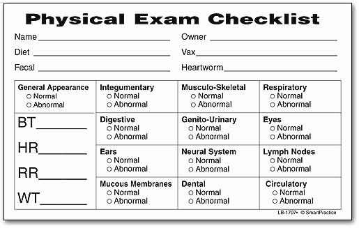 Physical Examination Forms Template In 2020 Lesson Plan Template